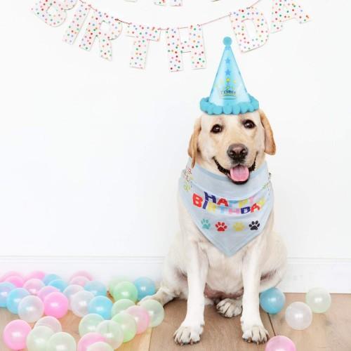 VIPITH - Bandana Triangolare in Cotone per Cani con Grazioso Cappello da Cagnolino, Ideale Come Regalo e Decorazione per Fest
