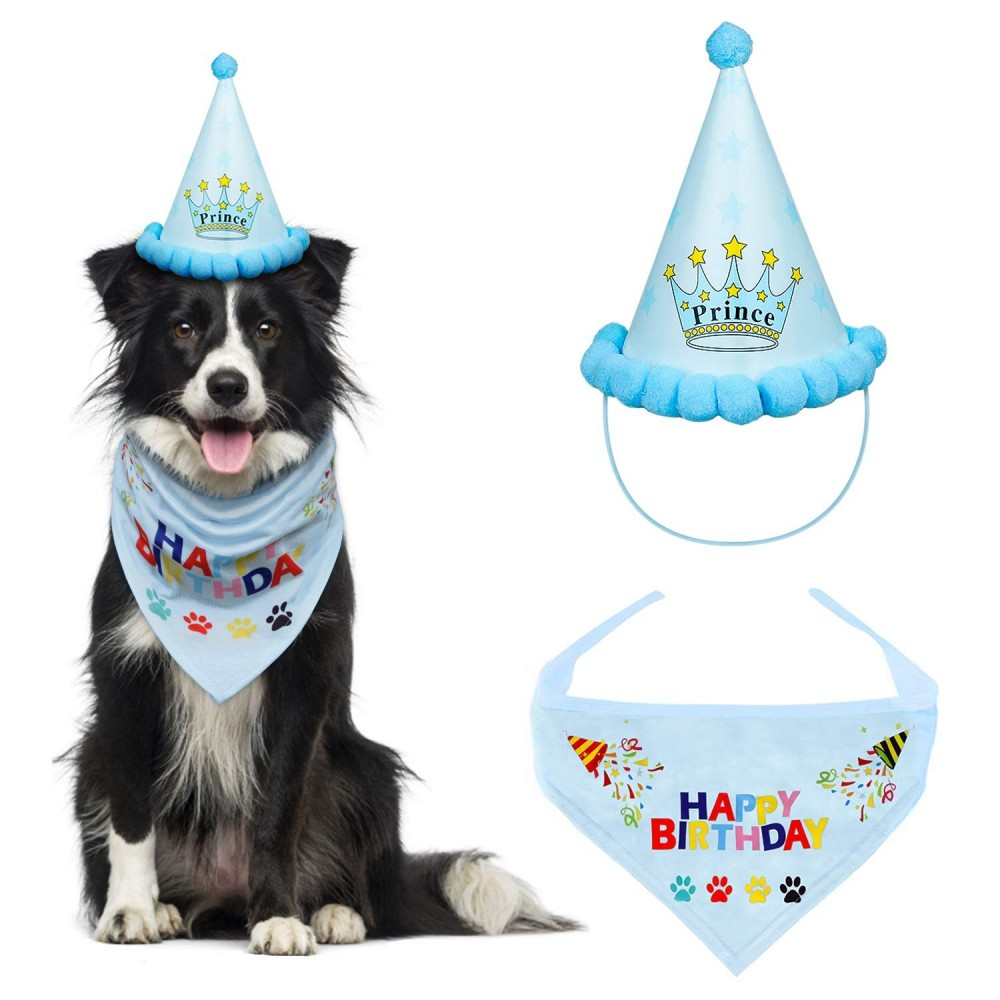 Bandana Triangolare per Cani con cappello