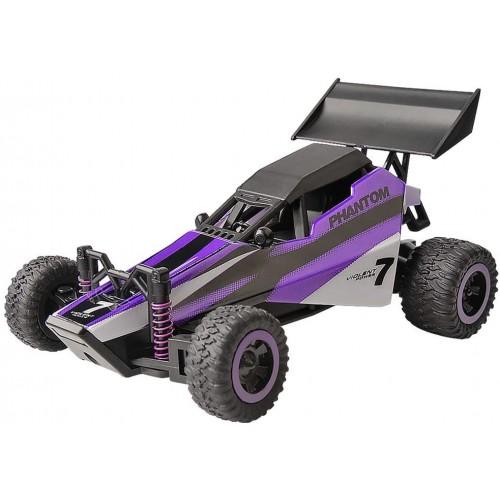 Auto da rally telecomandata, elettrica RC Racing