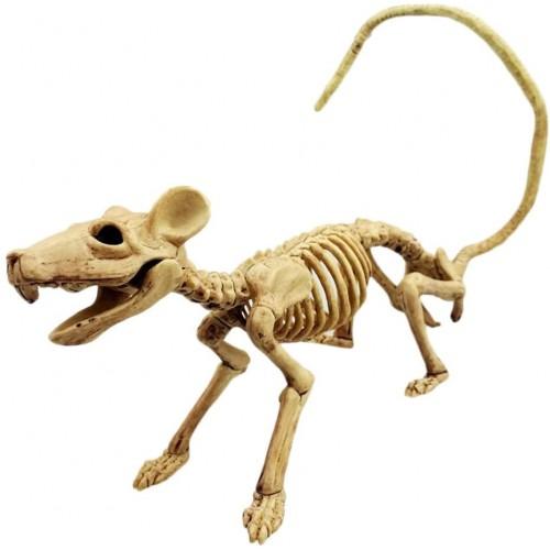 Scheletro ossa di topo per Halloween, terrificante