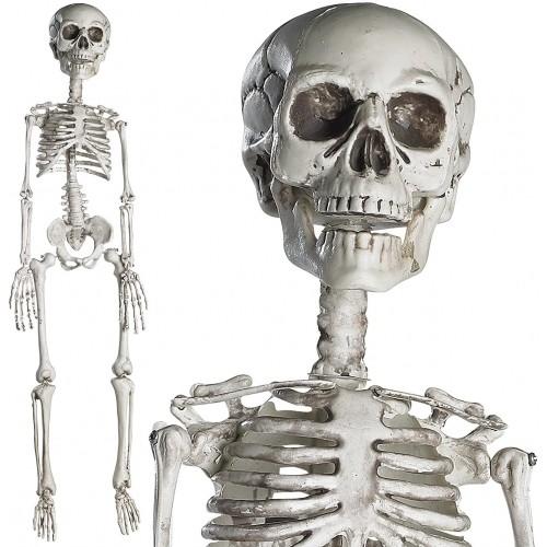 Scheletro di Halloween da 76 cm per decorazioni e allestimenti