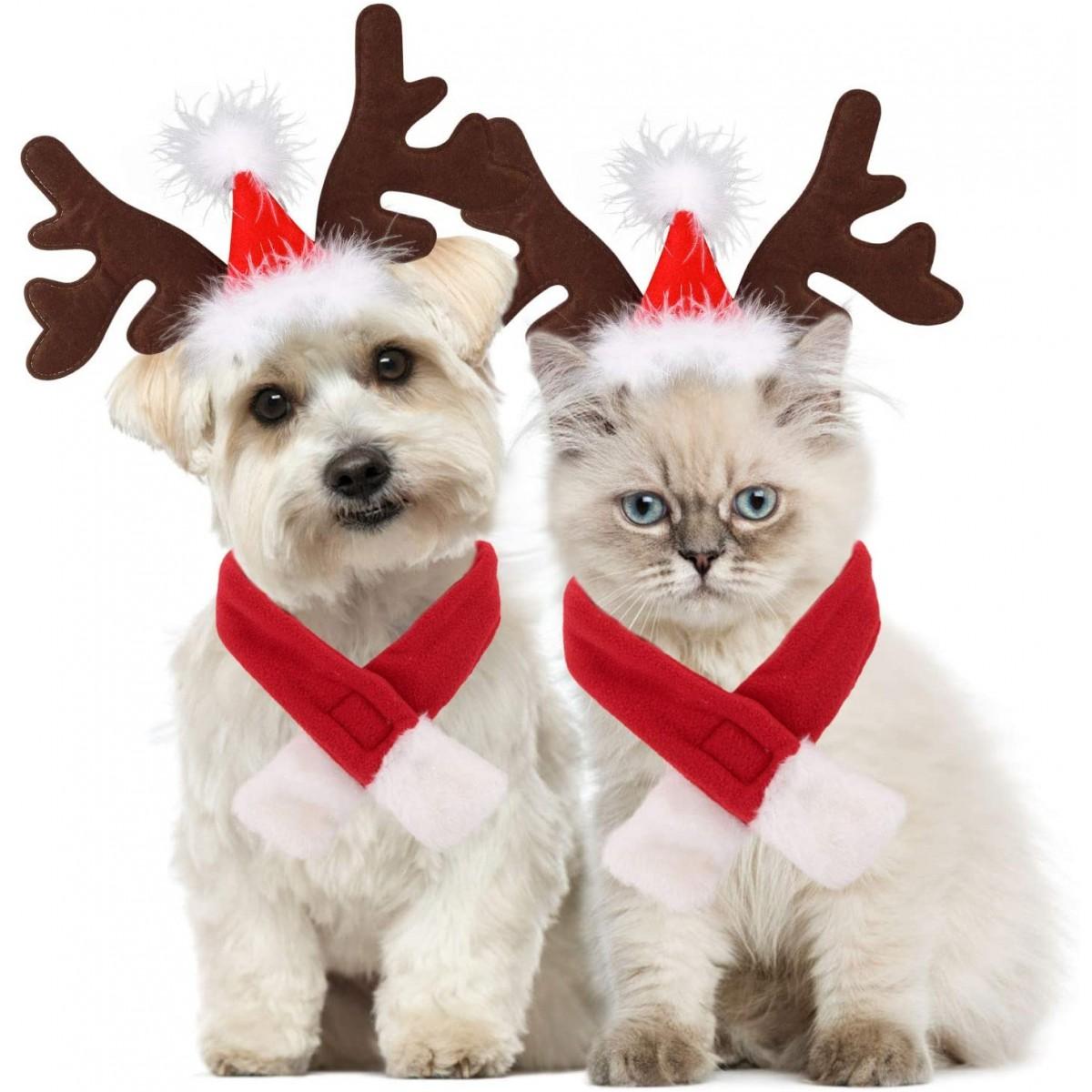 Costume renna di natale per cani o animali domestici