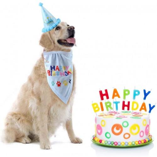 Bandana e cappello celeste per compleanno cane, comodi da indossare