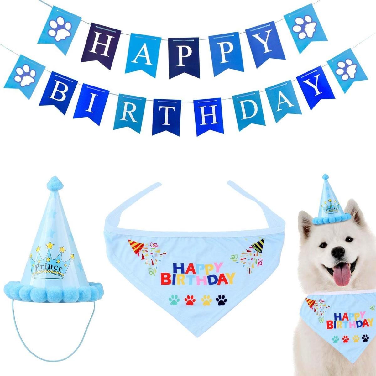 Kit addobbi festa per cani e gatti, con accessori simpatici e ghirlanda