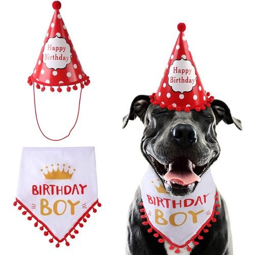 Set con bandana e cappello per compleanno cani, abbigliamento simpatico