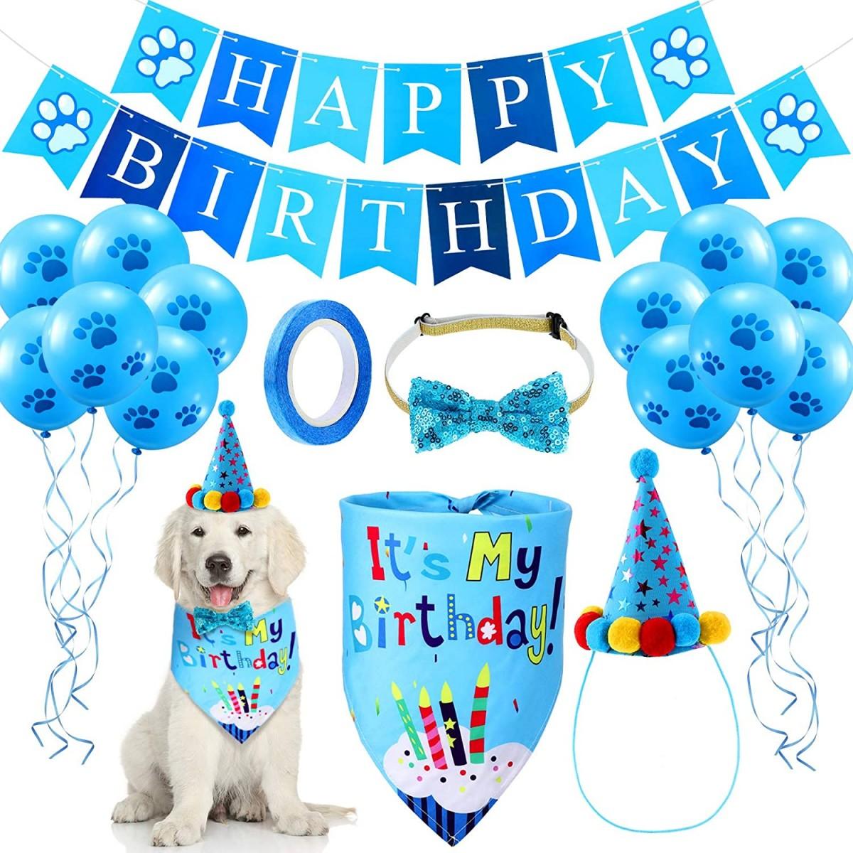 Set compleanno celeste per cagnolini con accessori e vestiti