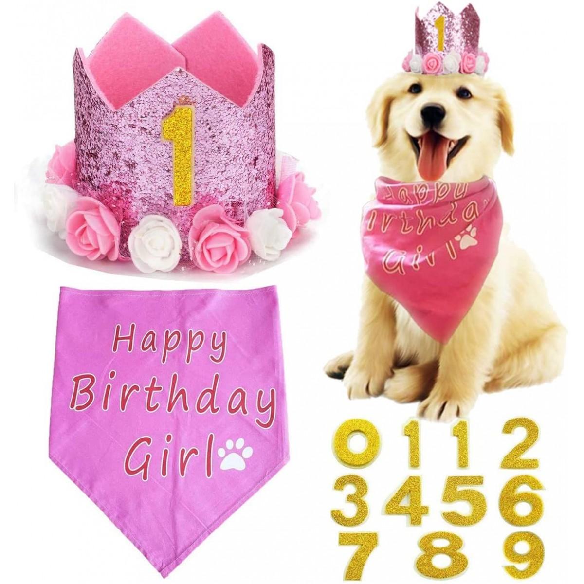 Set rosa corona di compleanno con bandana, per animali domestici