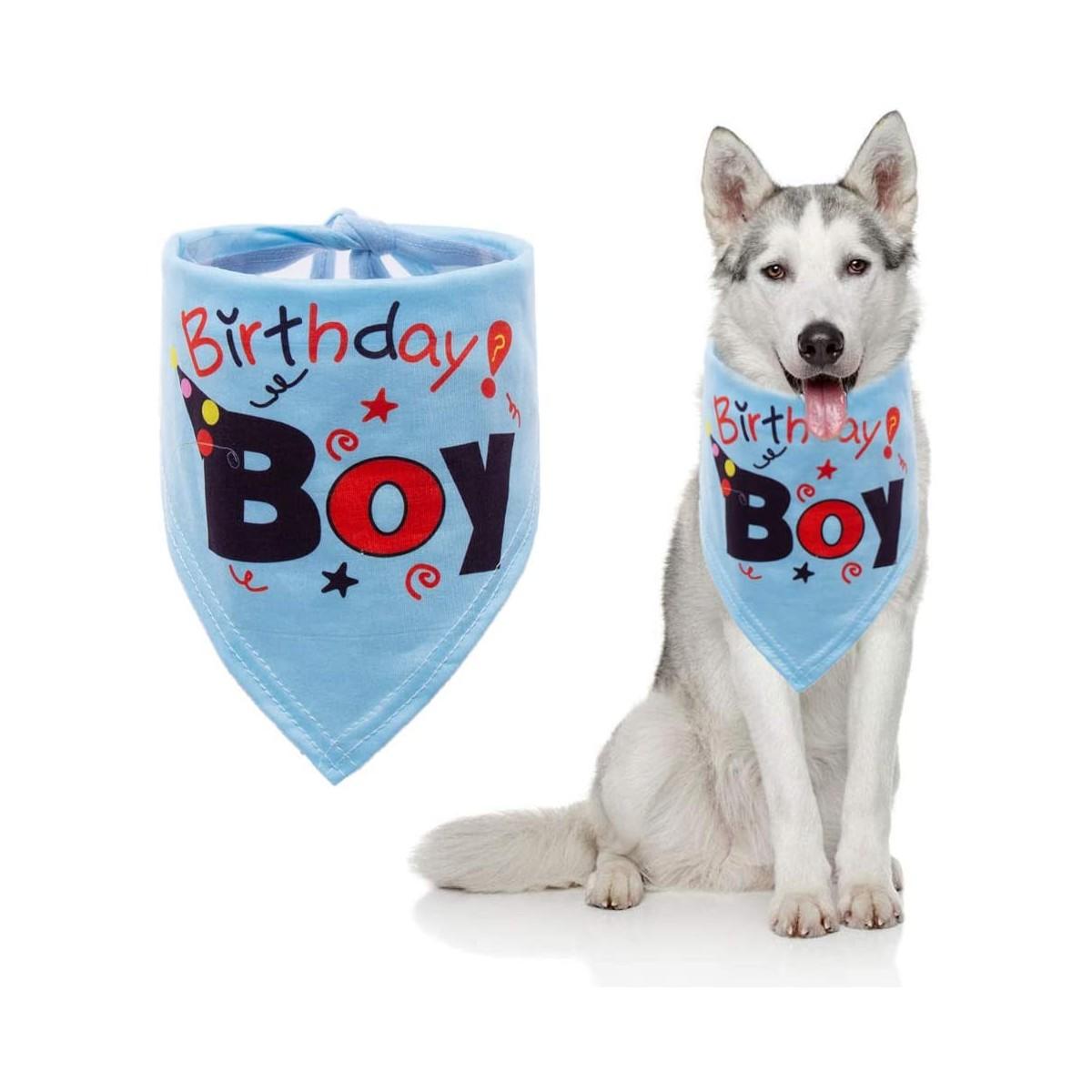 Bandana di compleanno per cuccioli di cane, Birthday Boy celeste
