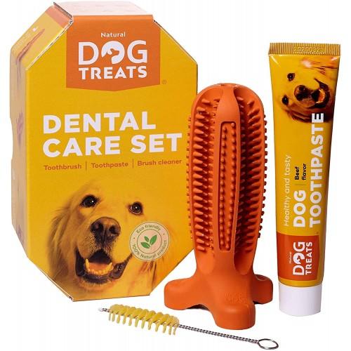 Set Spazzolino e dentifricio per cani, pulizia dentale