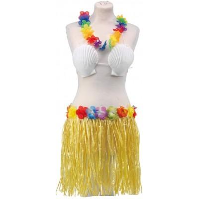 Costume hawaiano, 4 pz, con gonna, collana, reggiseno con conchiglie e fermaglio
